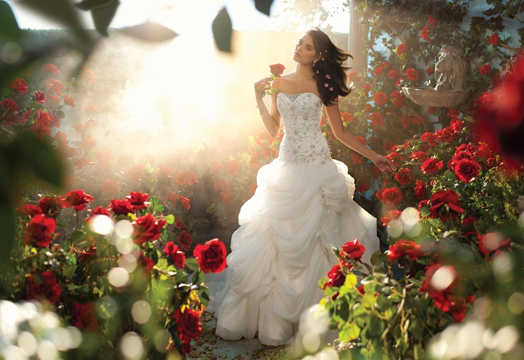 Wedding Philippines - 2013 Disney Fairytale Wedding Collection by Alfred Angelo - Belle